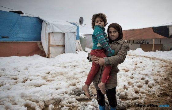 syria, pengungsi syria, perang syria,