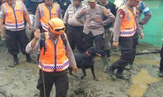 15 Anjing Pelacak Dikerahkan Cari Korban Banjir Sentani