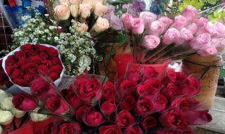perayaan valentine, hari kasih sayang, hadiah bunga, bunga valentine,