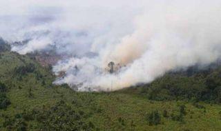 Kebakaran Hutan dan Lahan