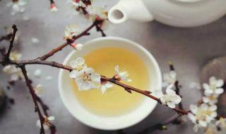 Bakar Lemak Tubuh dengan Minum White Tea