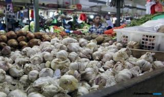 Bulog: Impor Bawang Putih untuk Stabilkan Harga