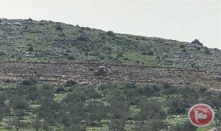 israel, palestina, israel sikat lahan, lahan, warga palestina,