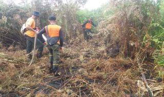 Kasus Karhutla di Riau Jerat 12 Tersangka