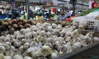 Kebijakan Impor Dinilai Bukan Solusi Stabilkan Harga Bawang Putih