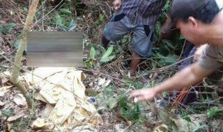 Mahasiswi Palembang Ditemukan Tewas Tanpa Busana di Kebun Pak Kades