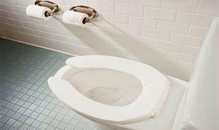 toilet perempuan, pelecehan, perempuan,