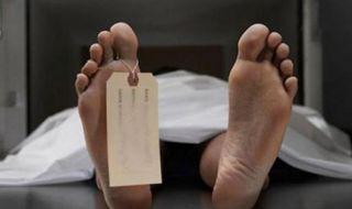 IRT tewas, IRT racun hama, IRT bunuh diri
