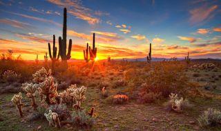 tembok perbatasan, meksiko, as, trump, arizona,