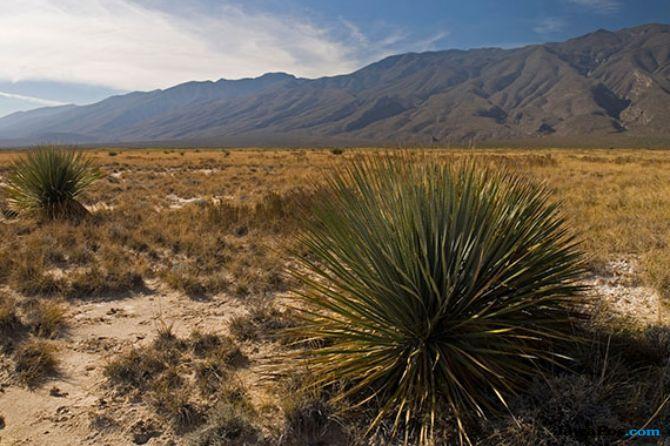11 anak kekurangan gizi ditemukan di gurun AS