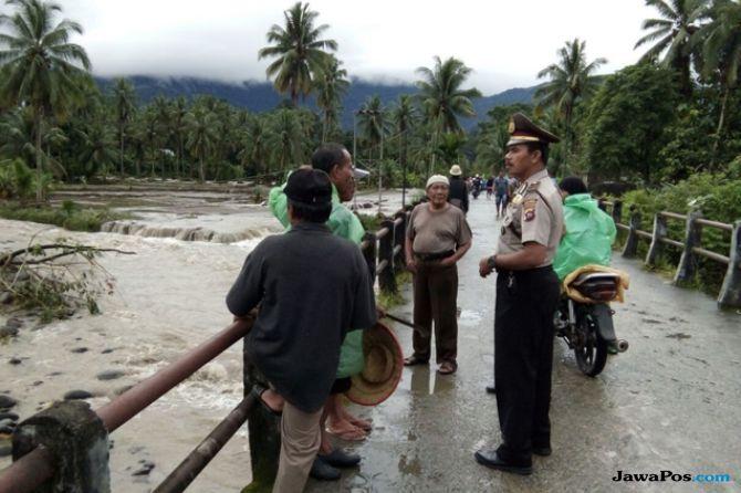 14 Kerbau Terseret Banjir Padang Pariaman, Kerugian Rp 2 Miliar Lebih