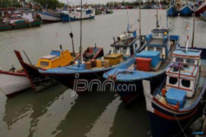 Pengusaha tak Bisa Ekspor Ikan, Tangkapan Nelayan Mubazir