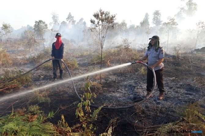 Belasan Hektare Hutan Lawu Terbakar