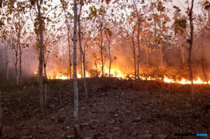 Benarkah Gawai Pemicu Kebakaran Hutan? Ini Penjelasan Masyarakat Adat