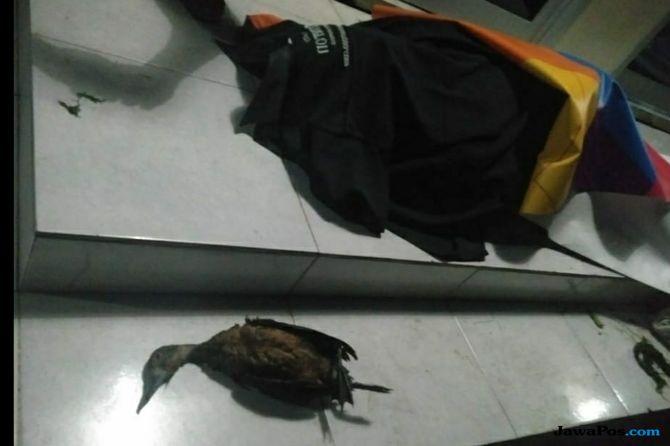 Berhasil Tembak Burung, Tomi yang Malah Tewas