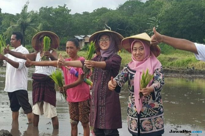 petani, petani indonesia, bank,