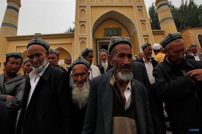 Musli Uighur