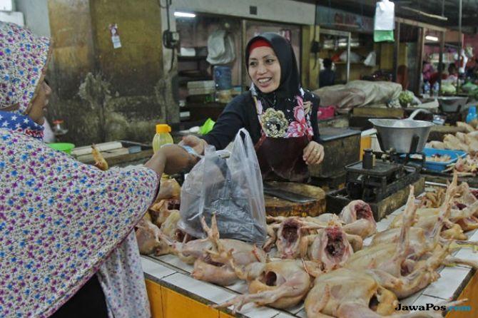 Harga Ayam Tembus Rp 60 Ribu/Kg, Masyarakat Cuma Diminta Bersabar