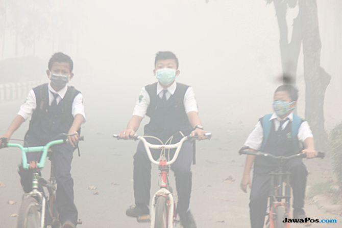 karhutla kalimantan, kabut asap kalimantan, kebakaran hutan lahan