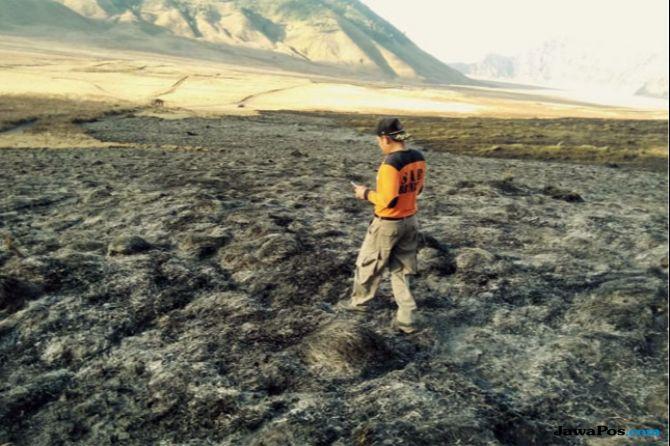 Kebakaran Savana Bromo