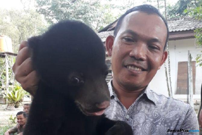 Lagi, Anak Beruang Ditemukan Tanpa Induk di Kebun Sawit