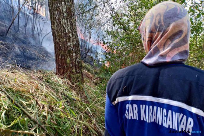 Hutan Lawu Terbakar