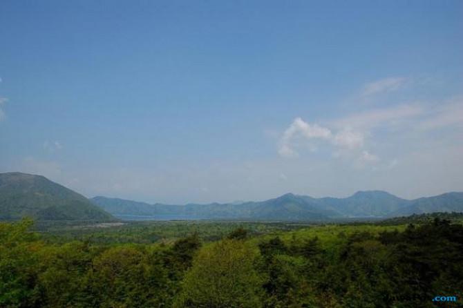 Mengintip Indahnya 'Hutan Bunuh Diri' di Jepang