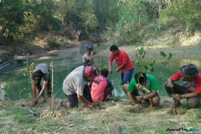 Penghijauan di Bantaran Sungai Bojonegoro Untuk Cegah Bencana Longsor