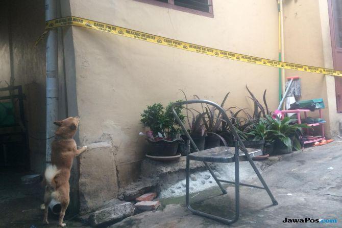Sebelum Pembunuhan, Tetangga: Sempat Terdengar Gonggongan Anjing