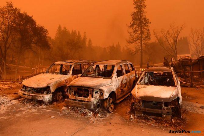 kebakaran hutan, kalifornia, mayat,