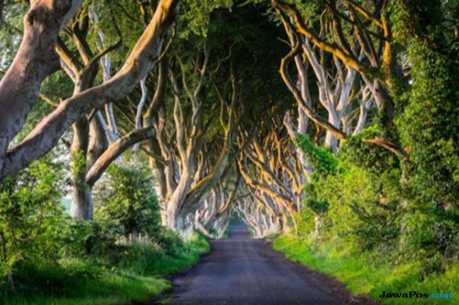 Serial Game of Thrones Berakhir, Westeros Bakal Jadi Tempat Wisata