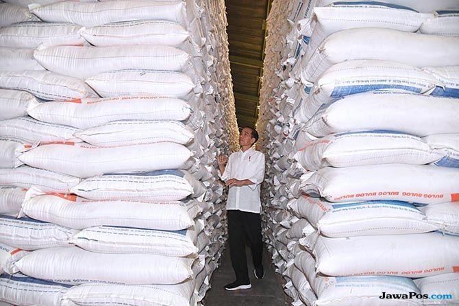 Stok Bulog Tiga Kali Lipat, Begini Pendapat Jokowi soal Impor Beras