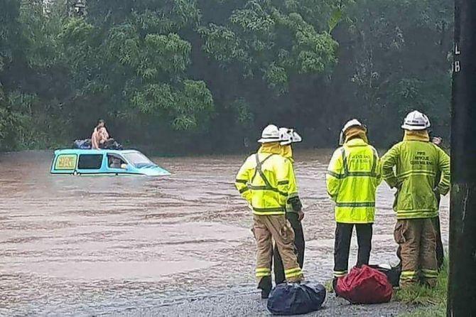 buaya, banjir, queensland, australia,
