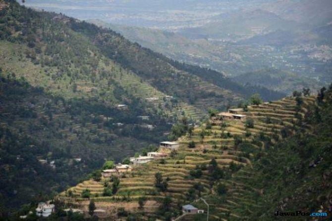 Warga Pakistan Ubah Bukit Gersang Ini Jadi Hutan