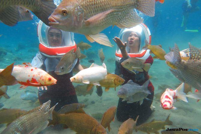 Wisata Underwater Milik BUMDes Tirta Mandiri di Ponggok, Klaten