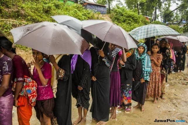 pengungsi rohingya, rohingya, angelina jolie,
