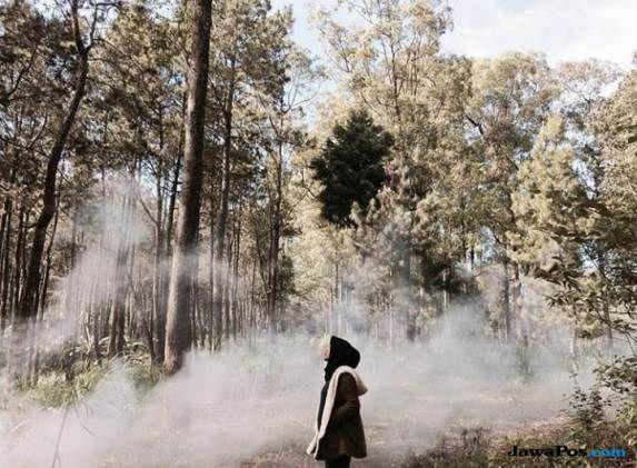 Aphelion Tidak Ada Kaitannya dengan Suhu Dingin di Indonesia
