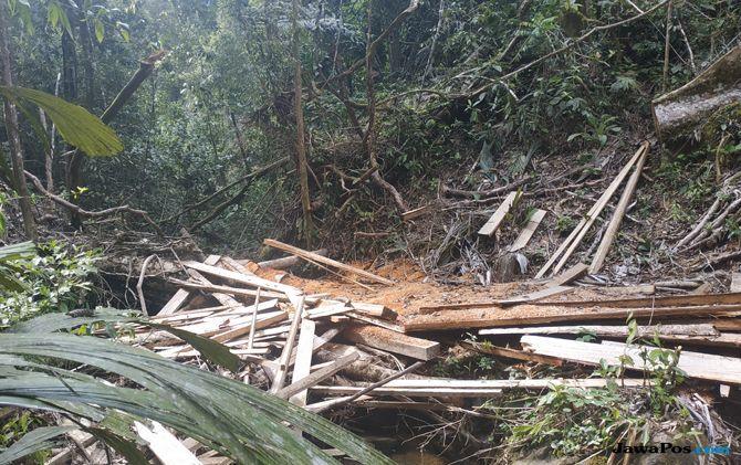 Ikhlas Mengabdi, Penjaga Harangan Batangtoru: Hutan Ini Nyawa Kami