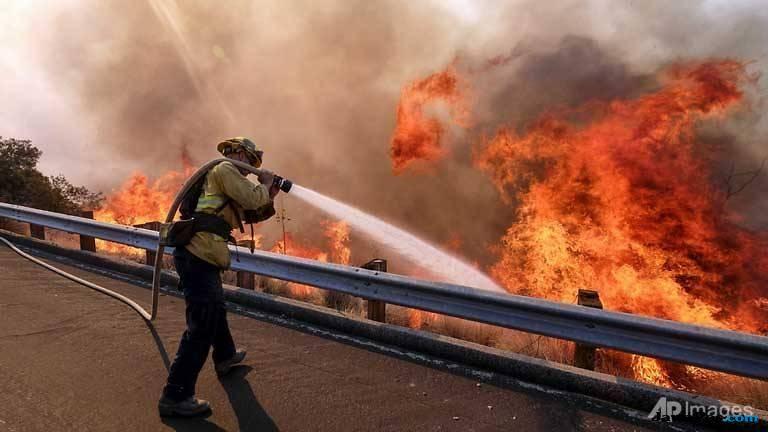 kebakaran hutan, kalifornia, hutan,