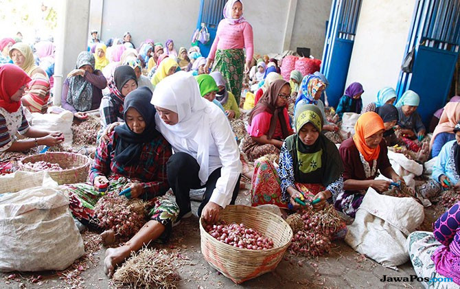Pedagang dan Petani Bawang Probolinggo Dukung Khofifah-Emil