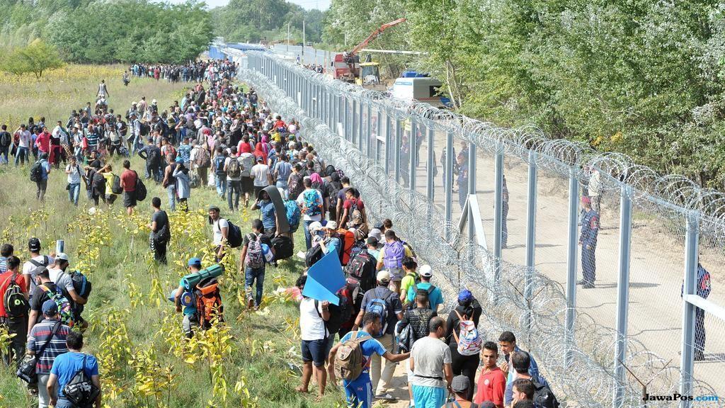 warga bosnia, bosnia, migran, pencari suaka,